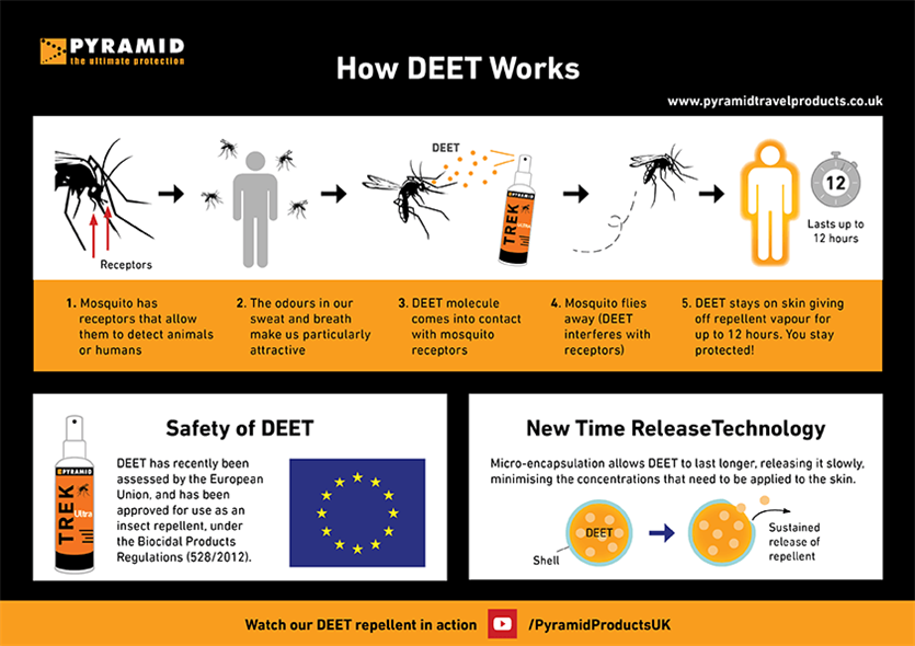 How DEET Works